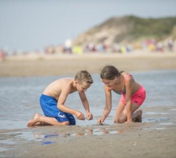 5ea72f9f725d22 Vakantiepark & Camping met zwembad in Retranchement - Zwinhoeve